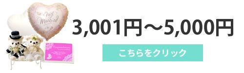 3001円~5000円