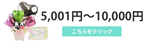 5001円~10000円